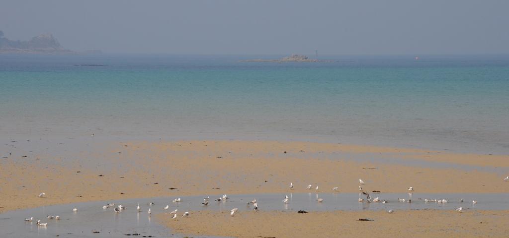 Strand + Meer